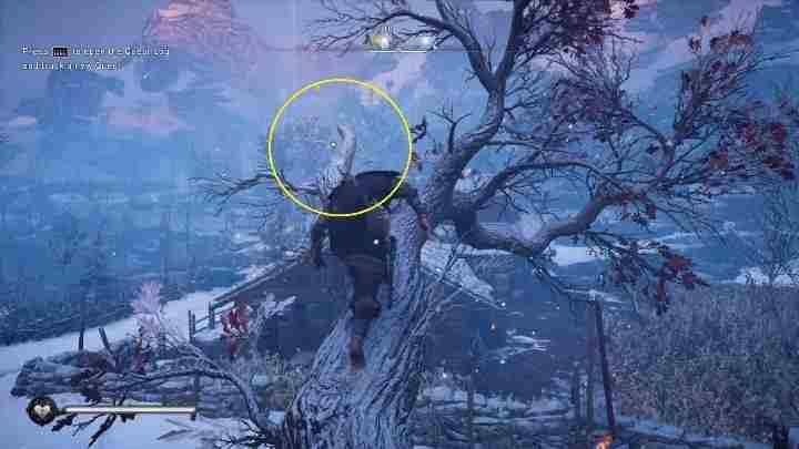 Assassins Creed Valhalla: Летающая бумага - Секреты Хордафилке